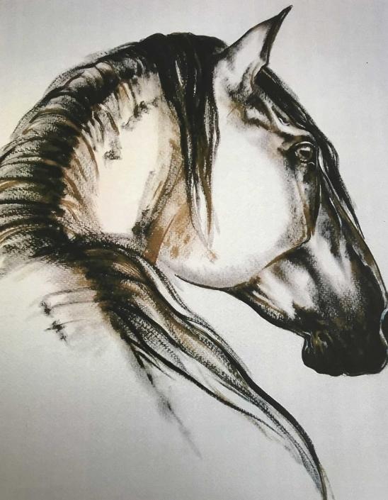 Pferde Portraits gemalt auf Leinwand |Das Atelier