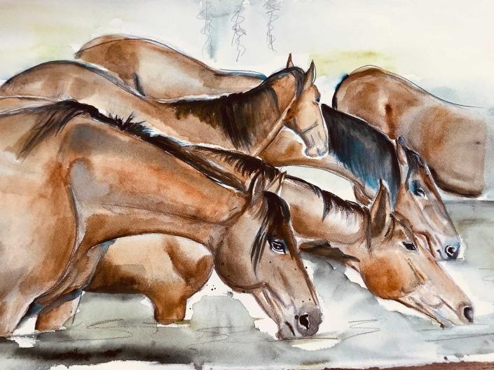 Pferde Bild auf Leinwand |Das Atelier Schwyz